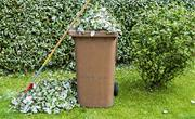 Garden waste subscriptions now open image