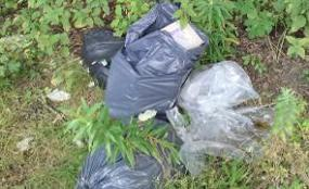 Residents fined for dumping waste image