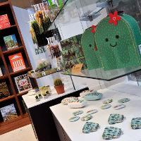 New shop opens at Sunderland Museum, Library and Winter Gardens